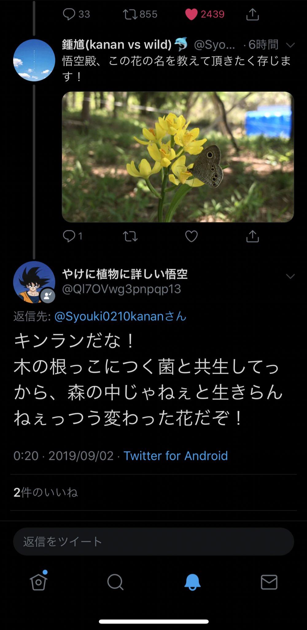 やけに植物に詳しい悟空、本当にやけに植物に詳しいしただ植物の名前を教えてくれるだけじゃなくて雑学も教えてくれるし自然を慈しんでるし、わからねえときマジで申し訳なさそうに一言目に謝りながら自分の知識不足を不甲斐ないと悔いててすき