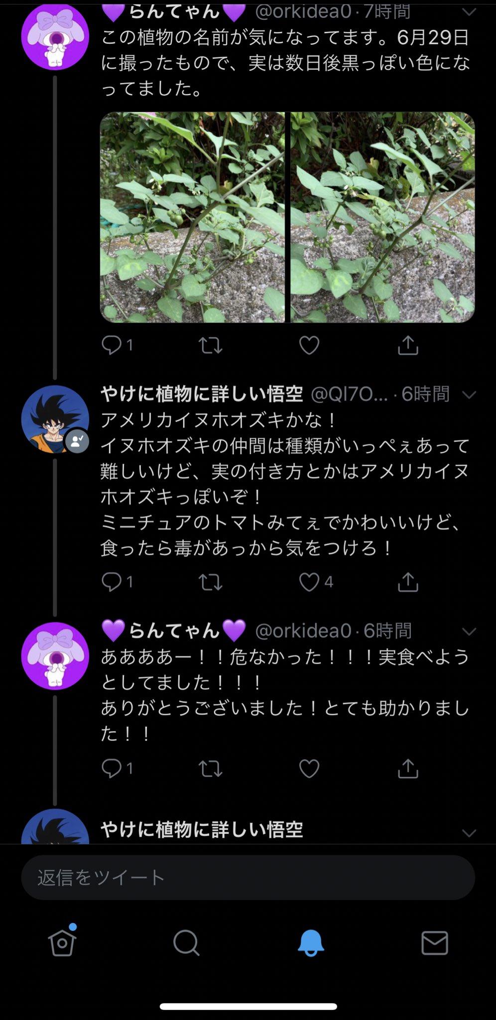 やけに植物に詳しい悟空がツイッターに出現www
