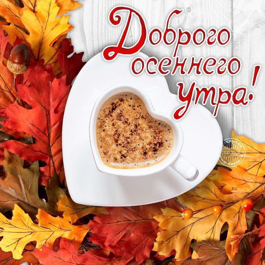 Открытку, красивые открытки с пожеланиями доброго утра и хорошего дня осенние