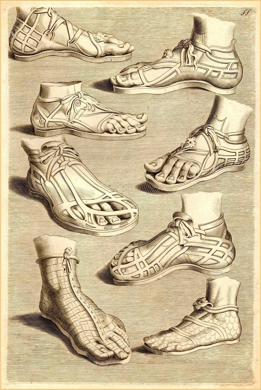 водой обувь древнего рима картинки ряска поделилась