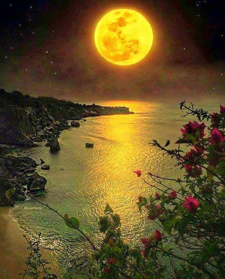 Картинки спокойной ночи природы