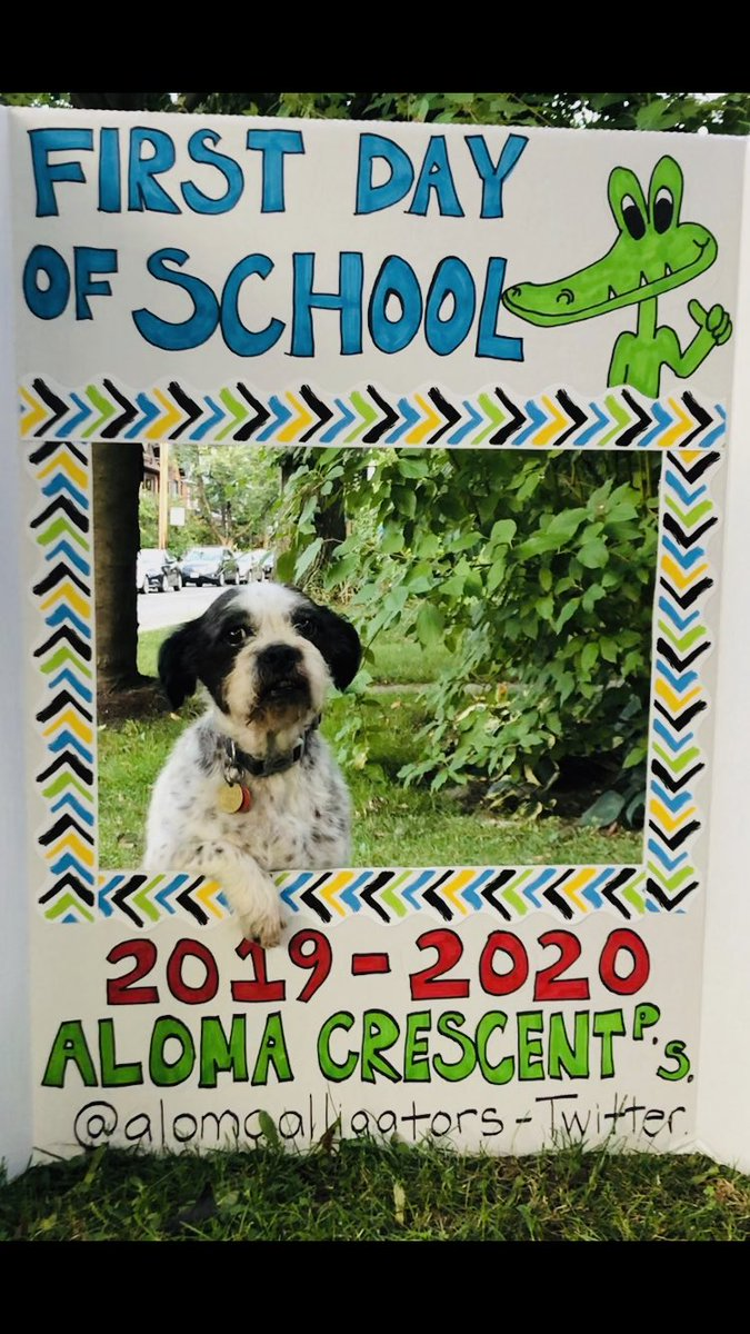 Dog Days Of Summer 2020.Aloma Crescent On Twitter The Dog Days Of Summer Are Over