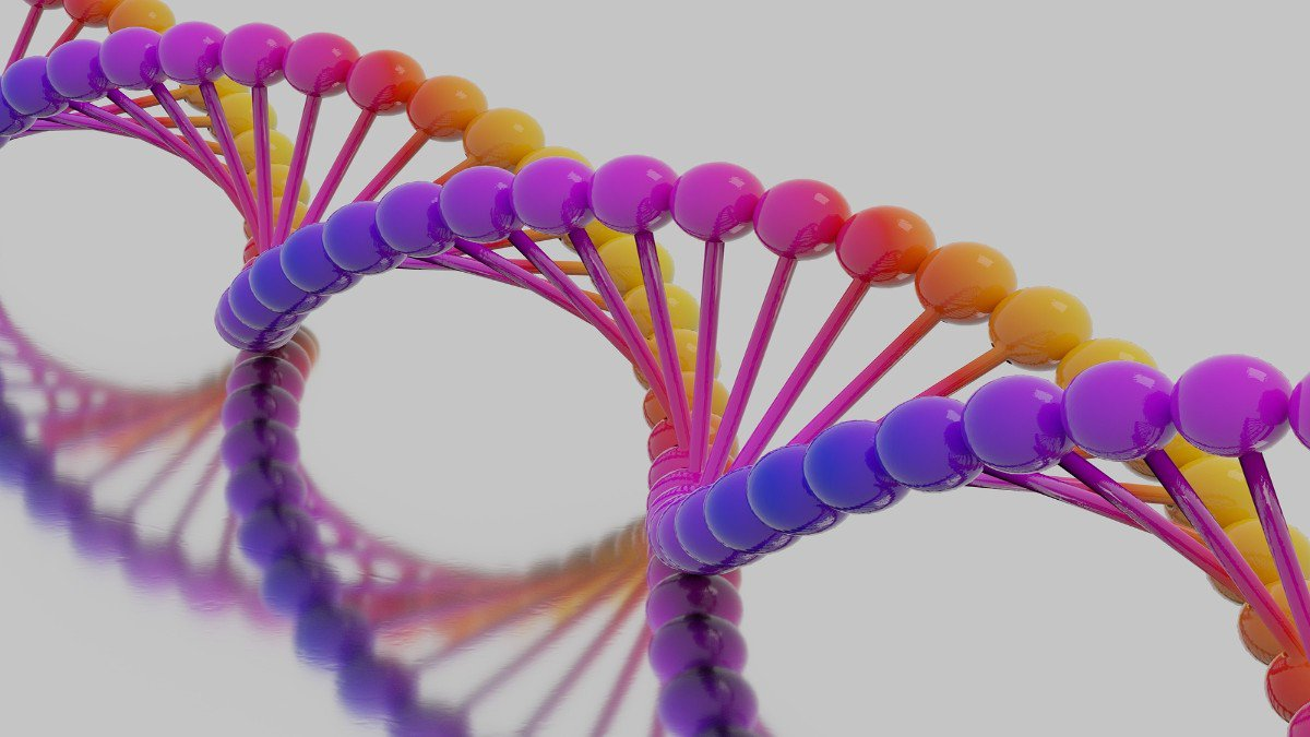 Homosexuality gene