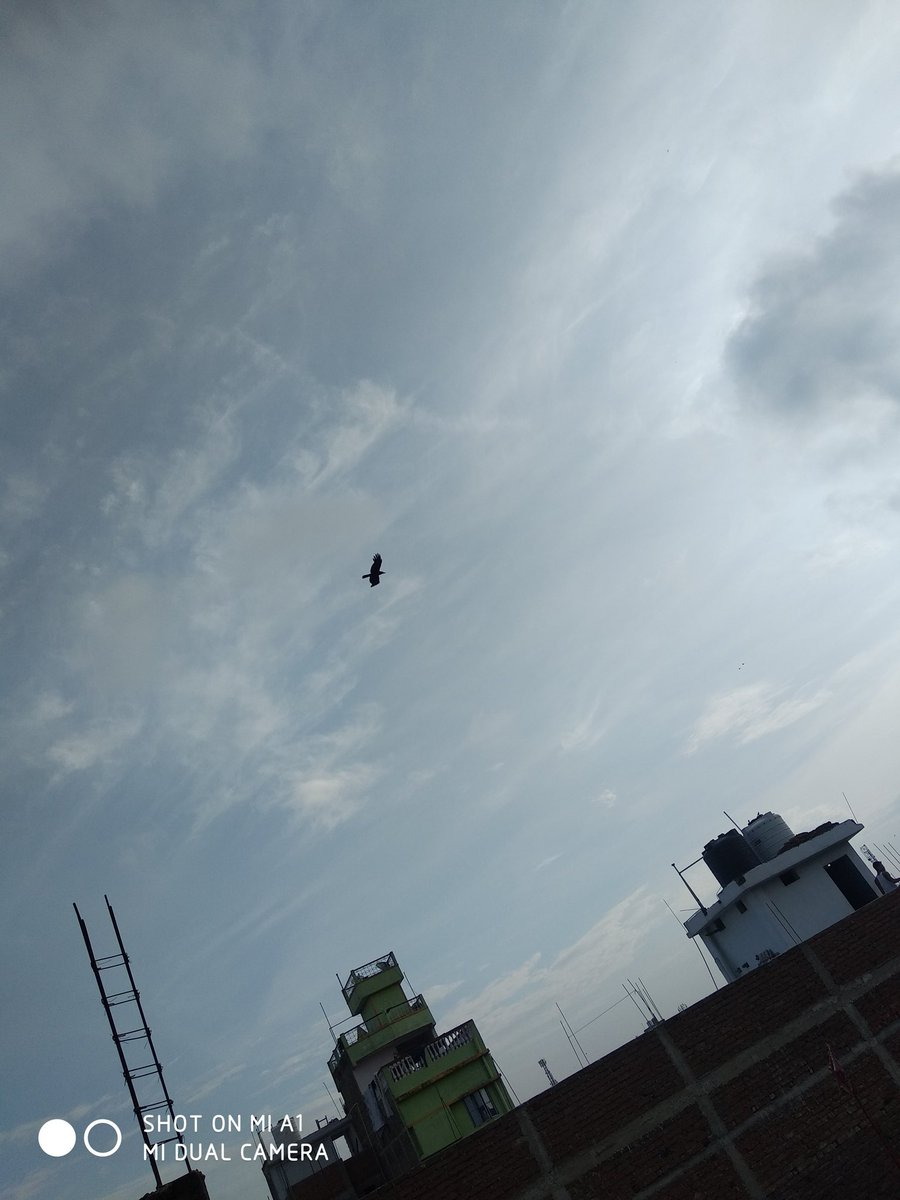 mia1 hashtag on Twitter