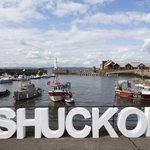 Image for the Tweet beginning: Calling all shuckers! Today is