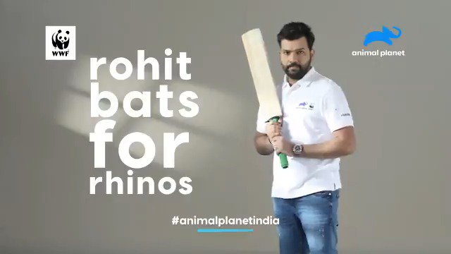 There are approx. 3500 #Greateronehornedrhinos in the world today; 82% of them in India. Join me to #batforrhinos on #worldrhinoday and support measures to protect these animals in the wild. Log onto http://www.rohit4rhinos.org to support the cause. @WWFINDIA  @AnimalPlanetIn
