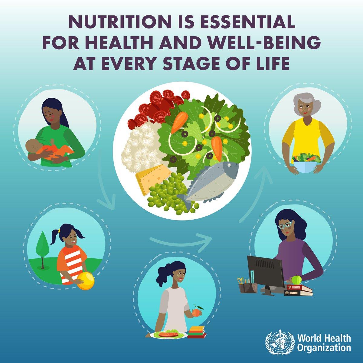 world health organization diet