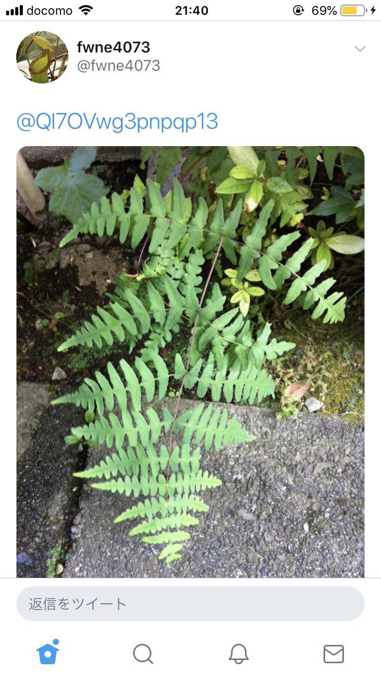 植物に詳しい悟空が出現した結果?さらに植物に詳しいべジータが出現したwww