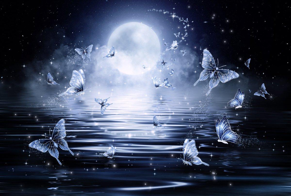 Нежность ночь картинки