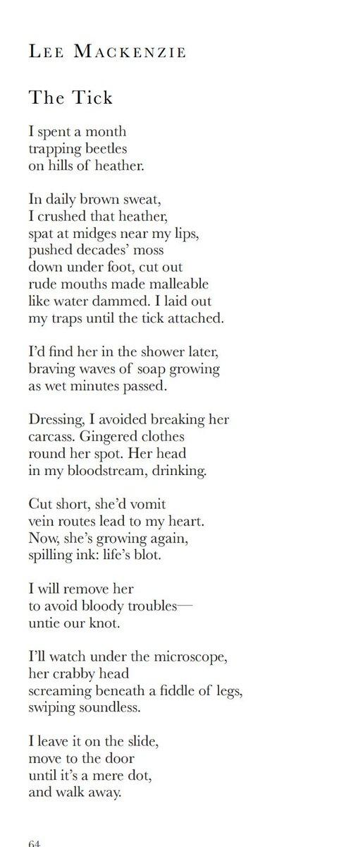 Forest Poets 💬🎤📚 (@ForestPoets) | Twitter