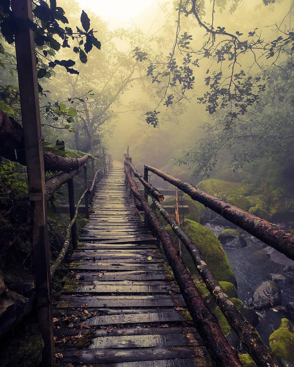 vista del puente en parque arcoiris