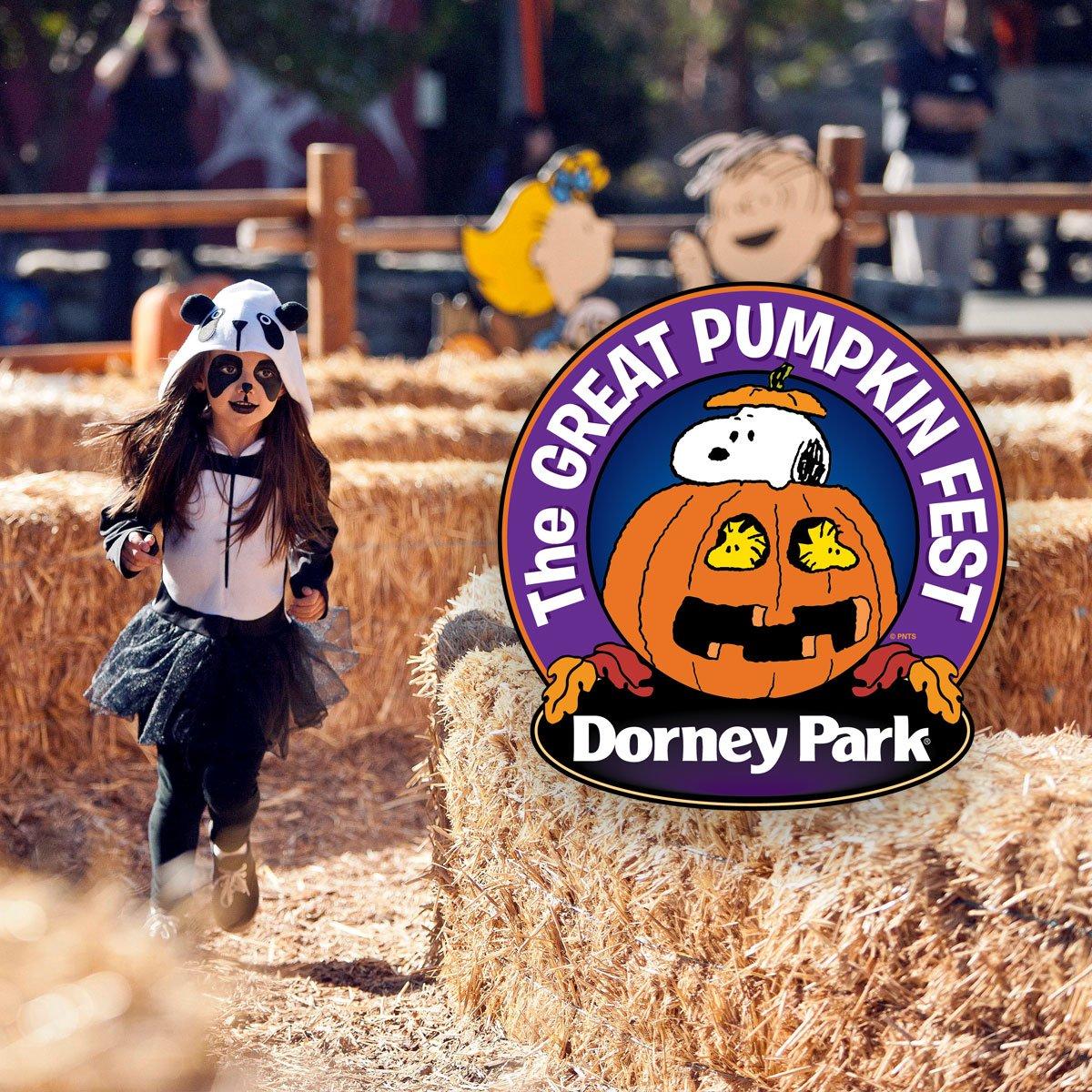Dorney Park (@DorneyParkPR)   Twitter