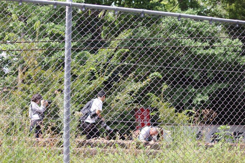 京急線の踏切事故でマスコミが線路内に立ち入り撮影している現場の画像