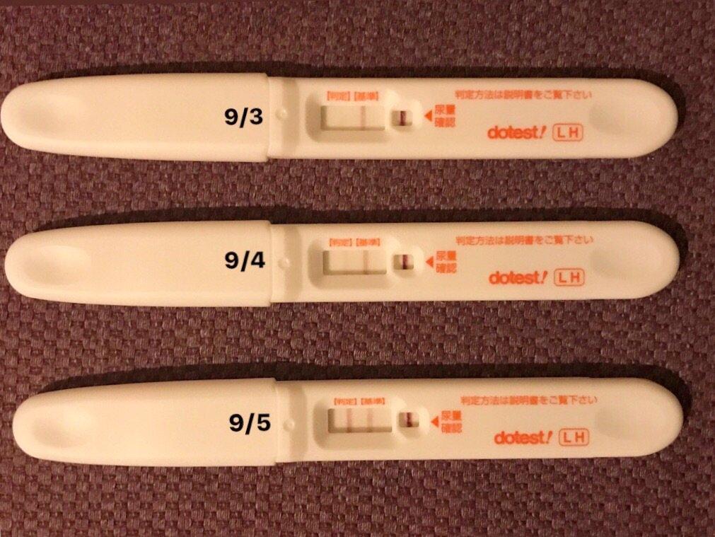 排卵 検査 薬 で 妊娠 検査