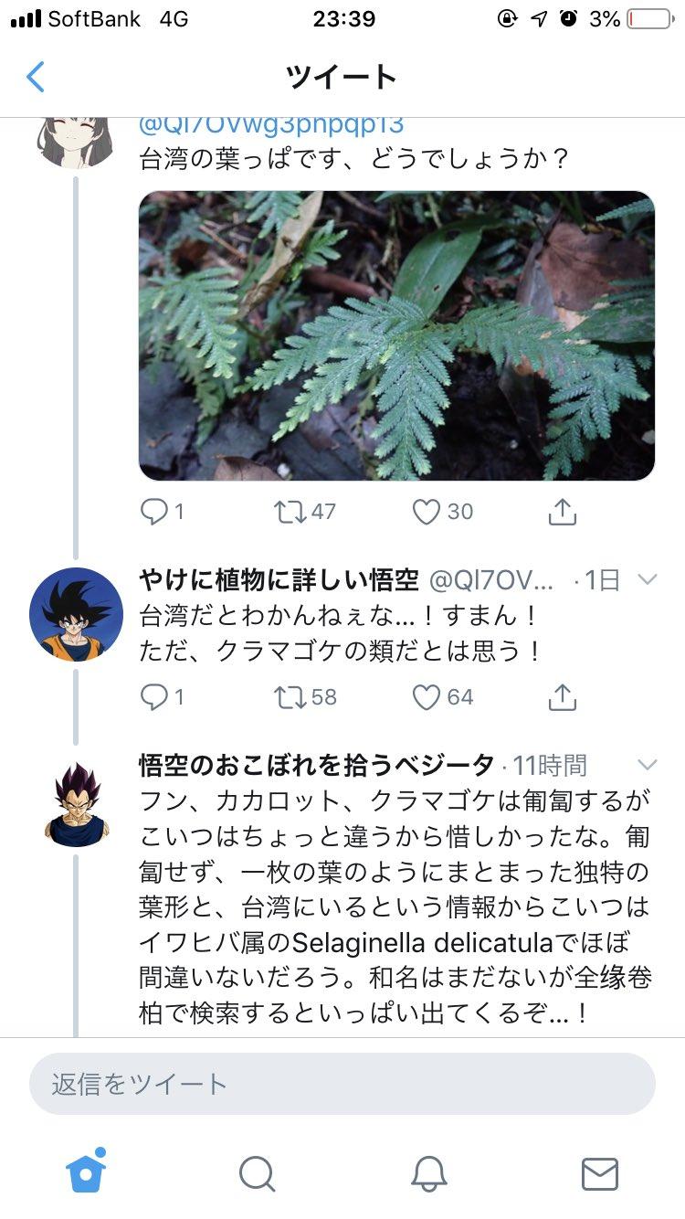 やけに植物に詳しい悟空wwwおこぼれを拾うベジータと2人の弱点を補うピッコロ出現に文字通り草www