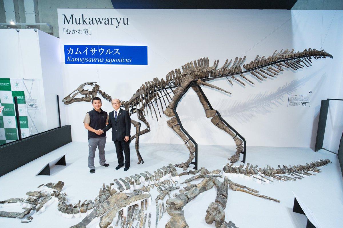 【㊗️「むかわ竜」学名決定!】 恐竜博2019で大注目の「むかわ竜」がこの度、正式に新属新種と認定され、学名が決まりました‼️ その名も… _人人人人人人人人人人人人人人人_ >カムイサウルス・ジャポニクス <  ̄Y^Y^Y^Y^Y^Y^Y^Y^YY^Y^Y^Y^Y^Y ̄ 学名の由来は『日本の恐竜の神』です おめでとう