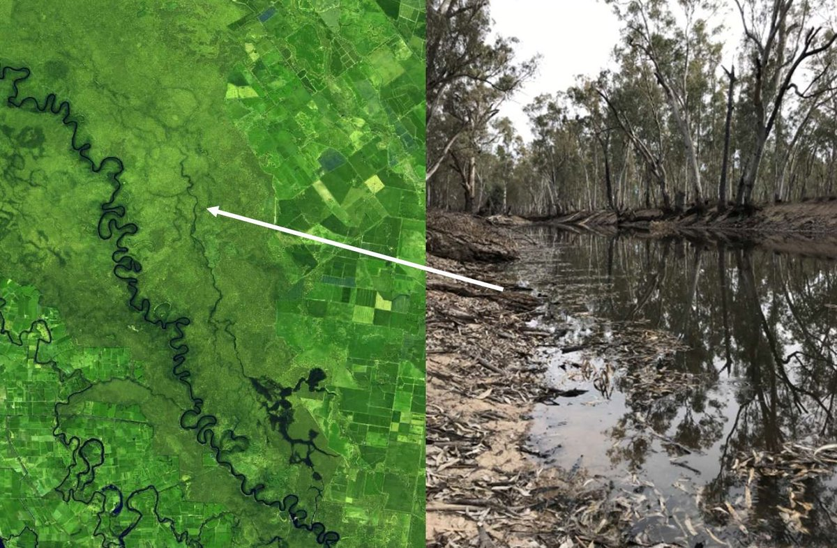 Great to see @MD_Basin_Auth use satellite imagery in its updates!