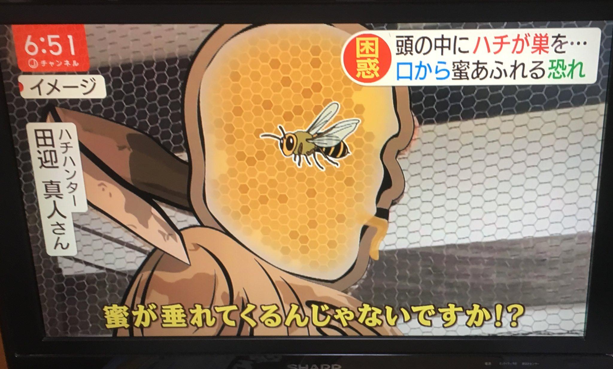 仁王の頭の中にハチの巣を作っていた!これなら天敵は誰もいない!