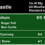 13:30 @NewcastleRaces  1st Ad Libitum 9/5 F 2nd Croeso Cymraeg 9/4 3rd Majestic Stone 4/1  A Win for @rogerfell22 and @benacurtis  Full Results here: https://t.co/ZMJRLmLiXS #HorseRacing #Results