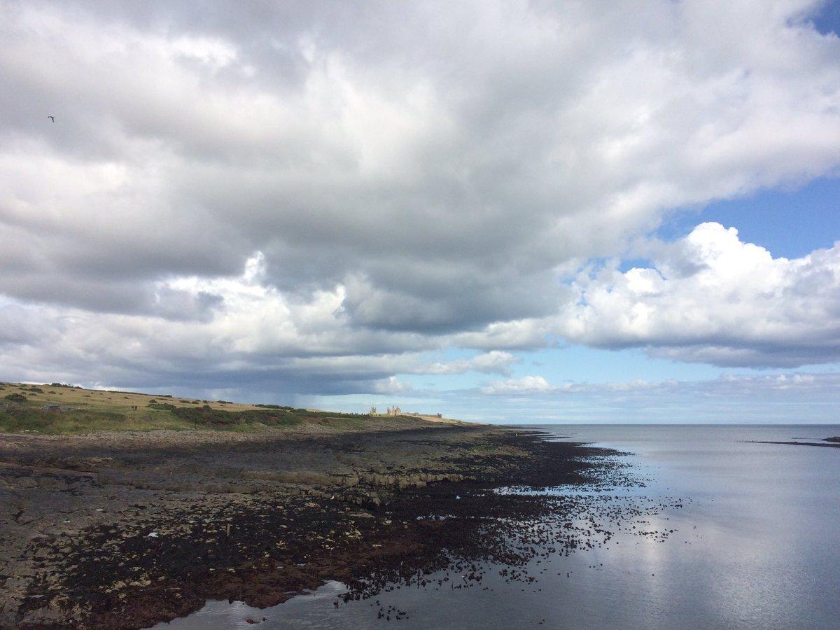 The Farne Islands (@NTFarneIslands)   Twitter