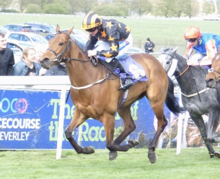 Two more horses declared to run @HamiltonParkRC on Monday , first up we have Dose with Paul Hanagan in the plate , then last time out winner Fairy Stories with leading apprentice @SeanPDavis3 in the saddle - get involved only £249 per year