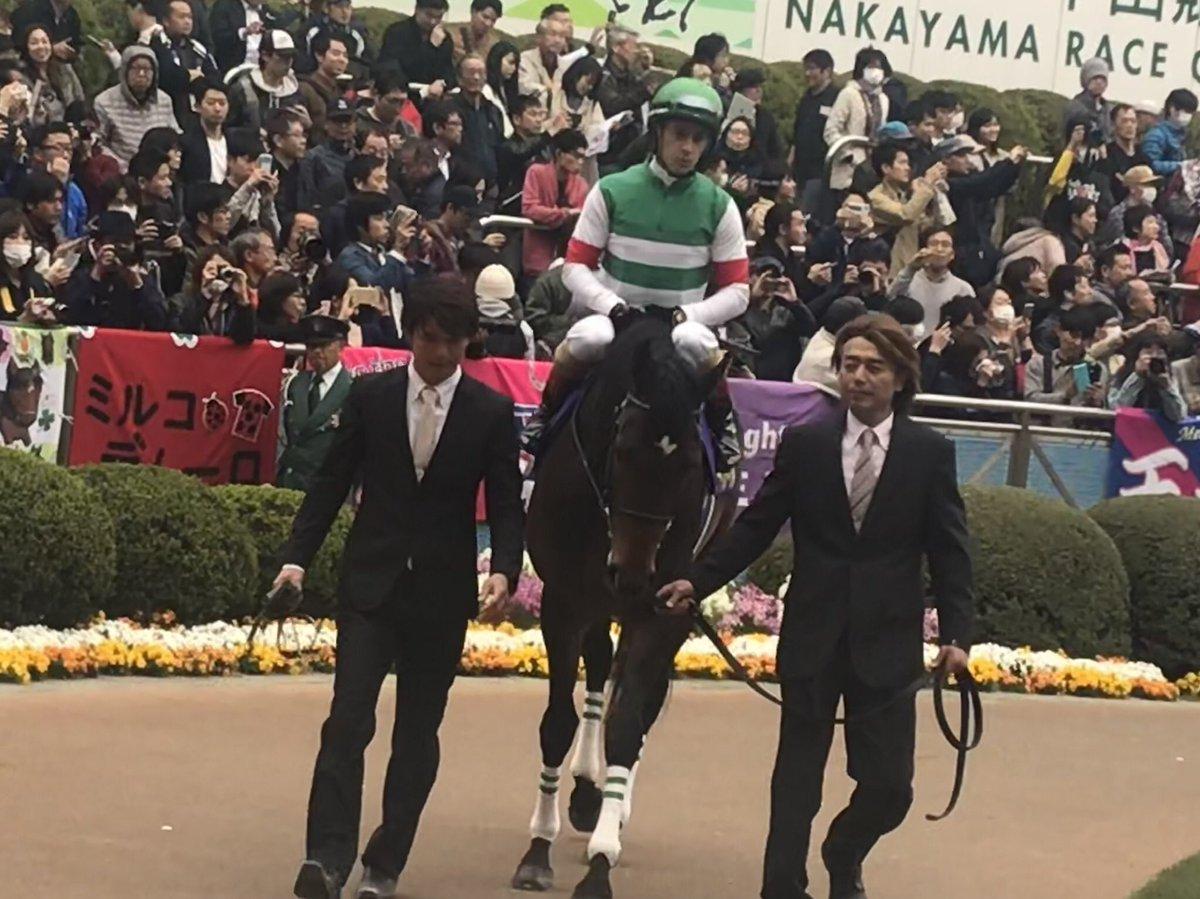神戸新聞杯のサートゥルナーリアとヴェロックスを逆転できる馬がいるとするとワールドプレミアは良さそうな気がする! ワールドプレミアにいい形で菊花賞に行ってほしいですね!☺️ #神戸新聞杯  #サートゥルナーリア  #ヴェロックス  #ワールドプレミア