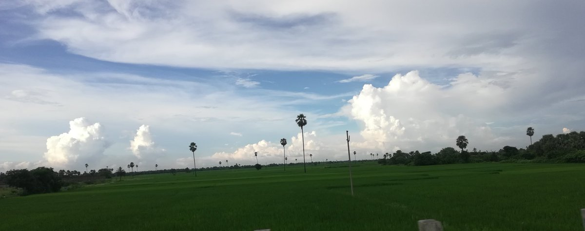 Wow ! Such a pleasant evening.  #Narsampet https://t.co/VfzgZa5kAy