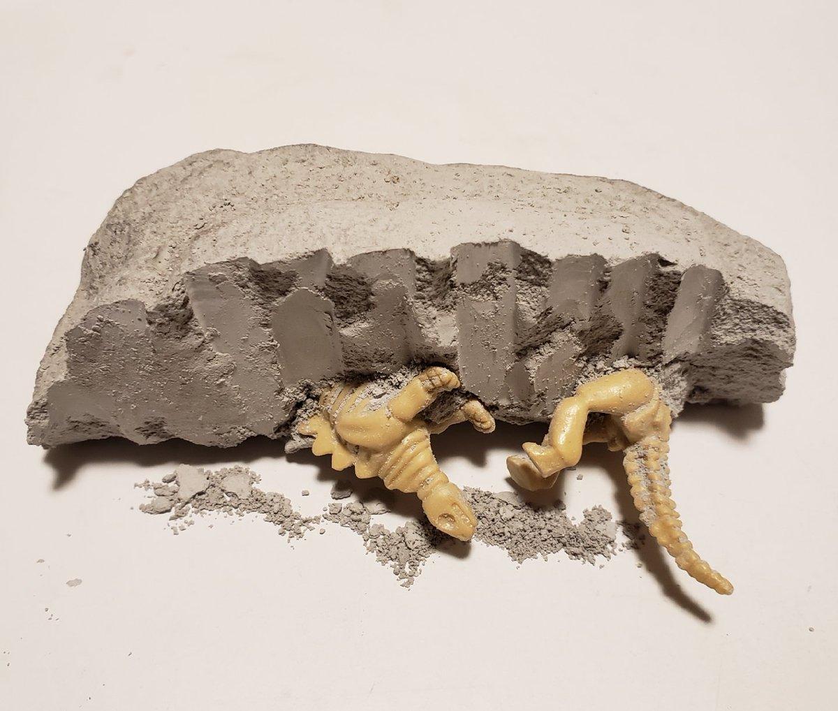 test ツイッターメディア - 発掘♪  ¥108で楽しめた!笑 #トリケラトプス と #ステゴザウルス 発掘。 ホンモノの化石発掘した事、あるけど、これはこれで楽しかったー  #ダイソー #恐竜 #化石 #発掘 https://t.co/zSz1BJCl8p