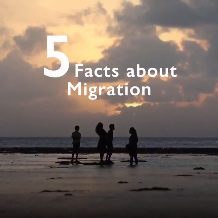 Here are 5 things you may not know about migration: