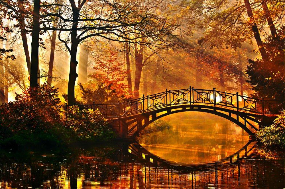 Прикольные днем, осенние пейзажи картинки красивые