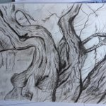 Image for the Tweet beginning: Superb Van Gogh drawing study