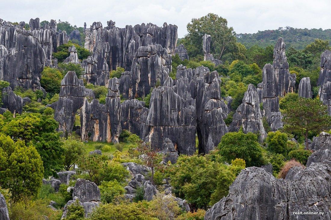 маме каменный лес фото китай важно использовать