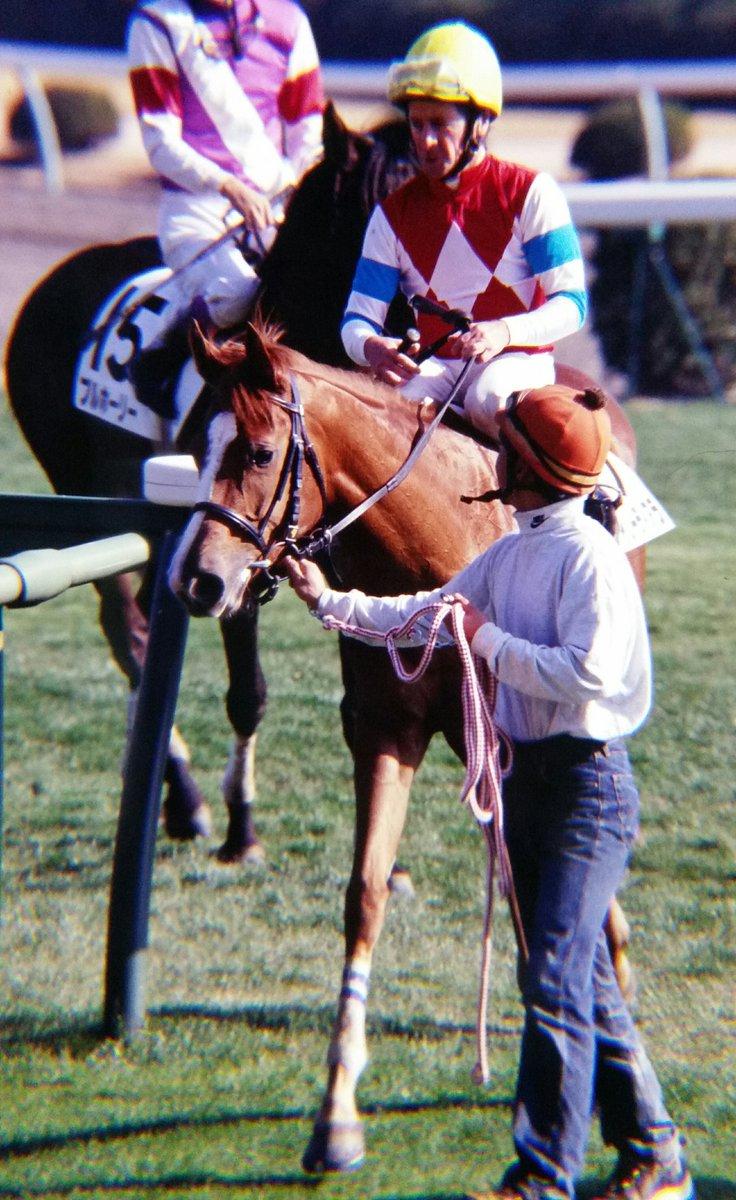プレイバック 平成メイクデビュー ゲイリーティアラ 父 Caerleon の外国産馬🐎 僅か3戦で引退したが引退後は米国で繁殖入りし仏GIの06年サンタラリ賞を勝った Germance を輩出している。 甥は17年イスパーン賞を勝ったメクタール。 写真はデビュー戦(5着)で鞍上はM.ロバーツ📷 #中山競馬