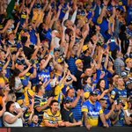 Image for the Tweet beginning: The Parramatta Eels are thrilled
