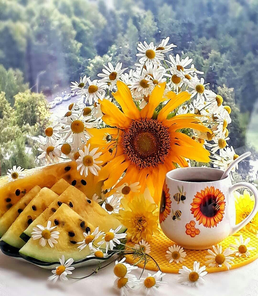 только с добрым утром картинки солнечного денька любителям отдыха