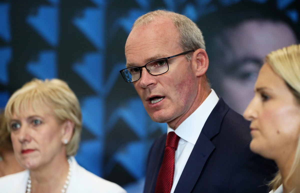 Dose of reality needed over hopes for new Brexit deal, says Irish Deputy PM Simon Coveney https://bbc.in/30y6WHZ