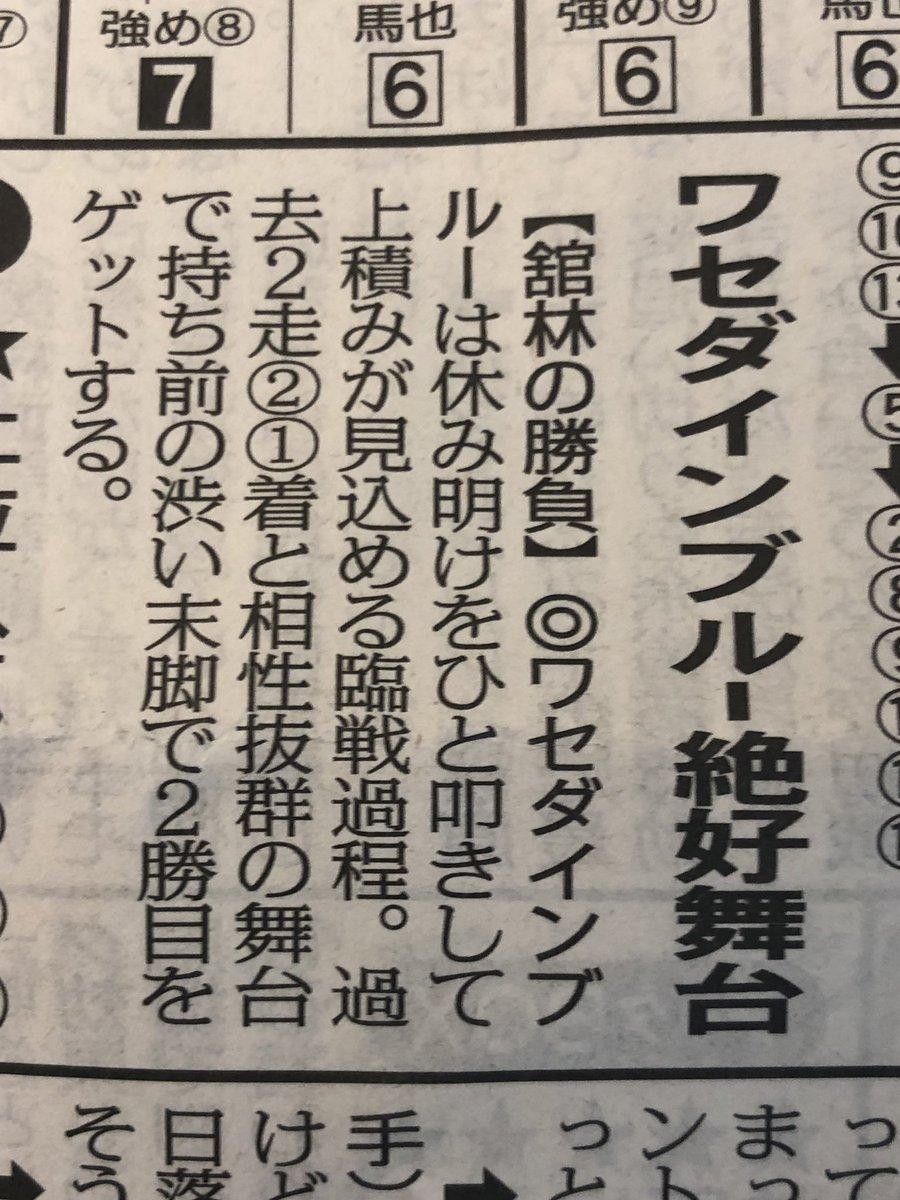 ワセダインブルー今週は武豊さんで出ます!!最高すぎます!! 都合で現場臨戦できないのが悲しすぎます😂 だれかパドックと勝ったら口どり写真貰えると泣いて喜びます😂