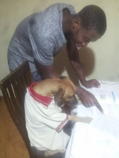 This one weak me He said hes teaching his dog how to read and understand, so dat he will know that life is not all about bark and bite