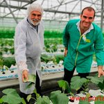Image for the Tweet beginning: 🌱Francisco Fernández, Global Farm Manager