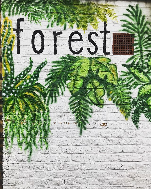 Loving the new artwork outside @forest_london . Not that I need another excuse to go inside though...🌿🌿🌿 ••• #sesussed  #buylocal #staylocal #supportlocal #shoplocal #southlondonliving #lovelocal #secommunity #loveselondon #selondontalent #southe…