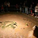 Image for the Tweet beginning: 15000 years ago, 140 bears