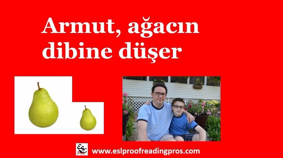 Armut, ağacın dibine düşer  #turkish proverb translated as:  A pear drops to the bottom of its own tree  #languagelearning #education #learning #englishforthestates #tristateenglish #Türk #atasözleri #Eğitim  #Türkiye 🇹🇷🇹🇷🇹🇷