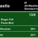 20:20 @NewcastleRaces  1st Fard 13/8 2nd Breathoffreshair 20/1 3rd Extrasolar 22/1  A Win for @rogerfell22 and @paulamuir94  Full Results here: https://t.co/hjHW74xBhK #HorseRacing #Results