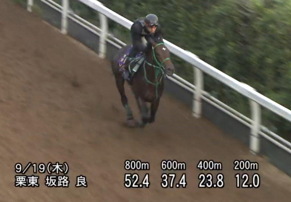 神戸新聞杯 調教見解  ・サートゥルナーリア  この馬の中で1番良い追い切りを消化したね💡 正直、ダービーも皐月賞もとても誉められた追い切りでは無かったよ😅 あれで良く4着、1着だったなと思う。 世間では『成長が無い』『掛かりクセが』と言われているが追い切りを見る限り何ら心配無いよ。