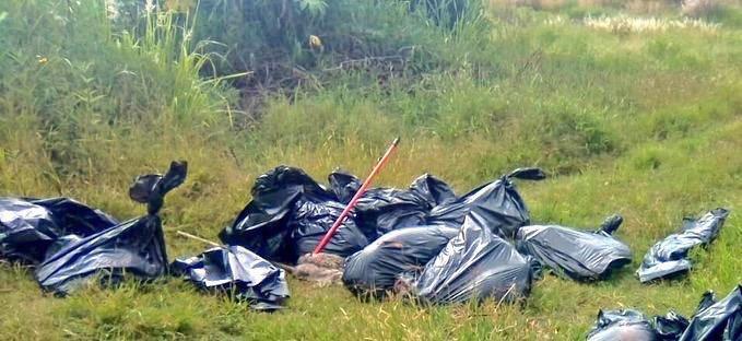 A un costado de un puente vehicular fueron localizadas 17 bolsas con restos humanos en el municipio de Tala, #Jalisco; momento se desconoce cuántos cuerpos son debido a que las partes estaban mutiladas.Vía @antonionerij #EnVivo con @EnriqueEnVivo por @WRADIOMexico