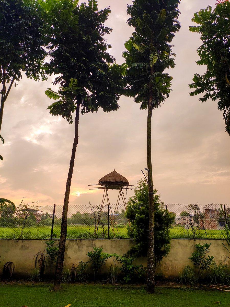 Good-morning Chitwan !   #VisitNepal2020  #exploreNepal