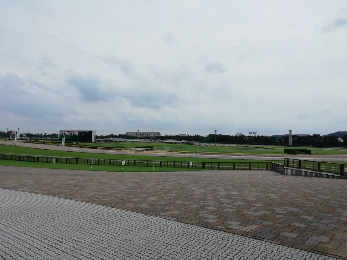 東京競馬場。 日本屈指の大レース、日本ダービーの舞台。 その他に安田記念、ジャパンカップ、天皇賞(秋)、その他いろいろ。 ウマ娘的にはWDT(ウィンター・ドリーム・トロフィー)の舞台。  でも今の時期は中山開催。ウィンズで営業中。