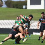 Image for the Tweet beginning: The @SSFCRABBITOHS are into the