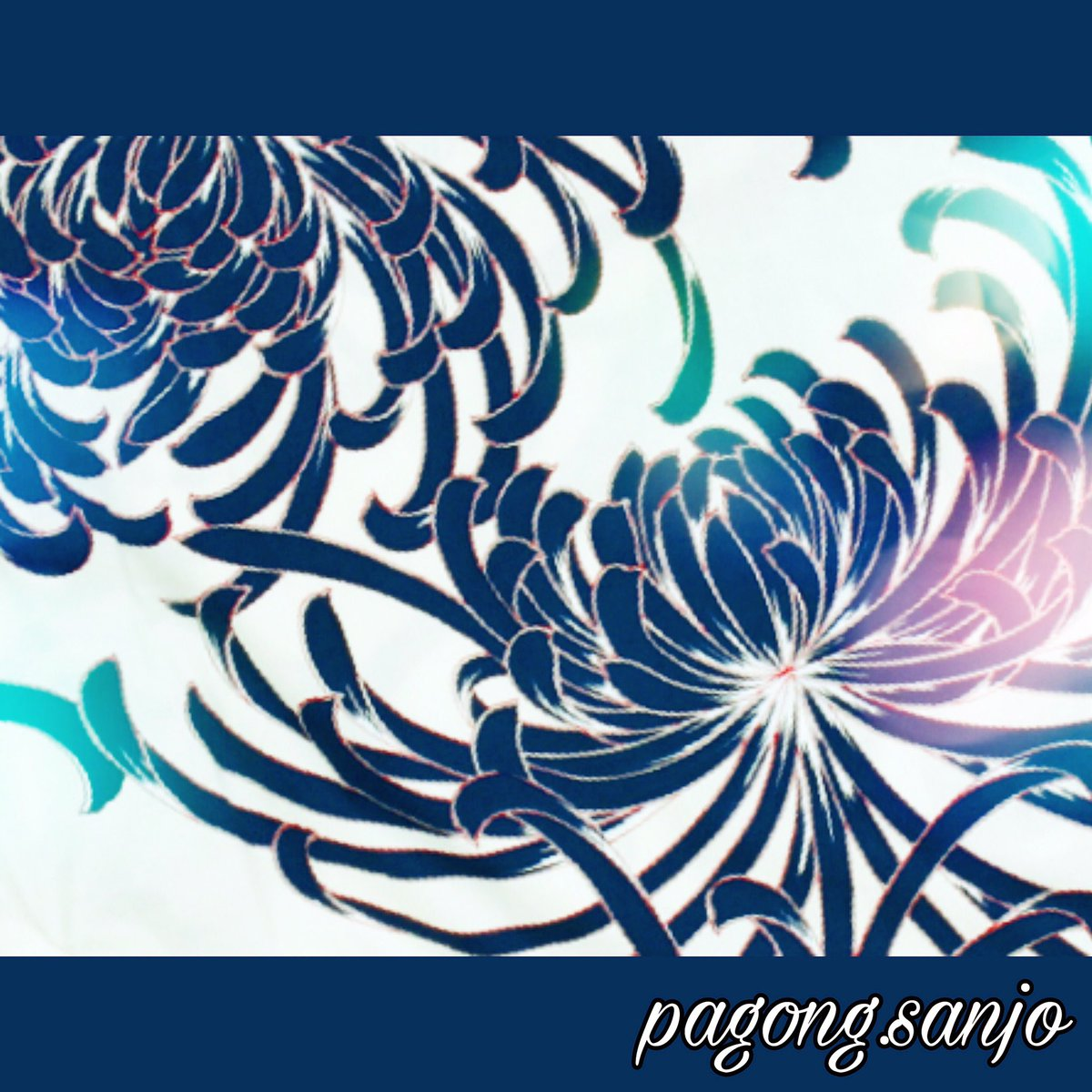 本日9月9日 は『 #重陽の節句 』ですね!#菊 を用いて #不老長寿 をお祝いする事から『 #菊の節句 』とも言われています。#パゴン にもたくさんの菊柄がありますが、中でもこの「 #乱菊 」は代表的な柄の1つです! #chrysanthemum #pagong #着物 #kimono #和柄 #京都 #kyoto  https://instagram.com/p/B2MOcM_AxZh/