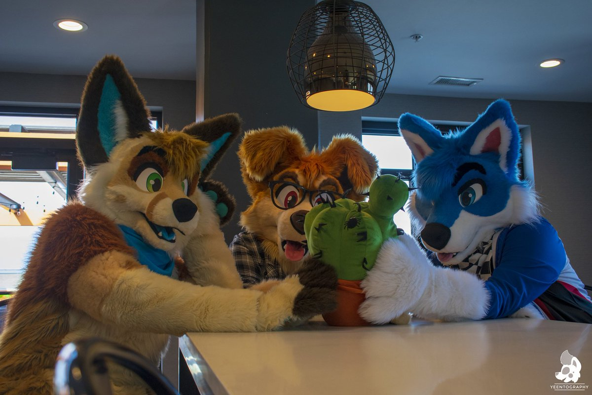 Some days, you just gotta start off right - by grabbing a catcus! ..With friends! (Note, this is not hugging the cactus. So it's totally okay.) #DailyDHC   Have a great week everyone!  Photo by @RoxxiYeen<br>http://pic.twitter.com/eVPFuLJgKw